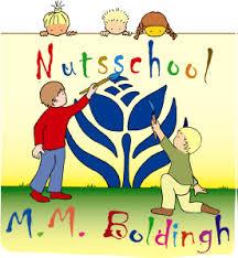 Nuts Boldinghschool Den Haag